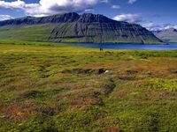 East-Fjords_lores