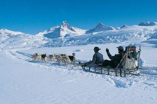 East-husky-sledge