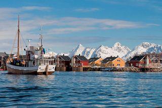 Lofoten-harbour-vn