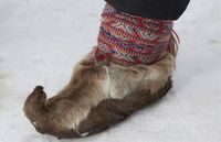 Lapland_Page_46_Image_0006