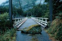Sl-fiordland-milford-track