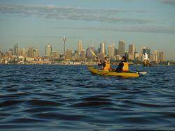 Sunrise kayak on Sydney Harbour