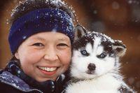 Quebec-husky-pup-tb