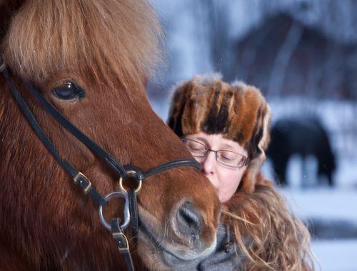 Kersten islandshast-127