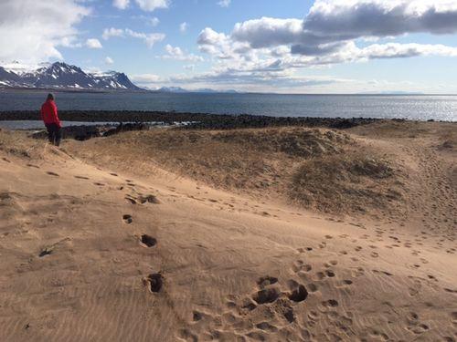 Golden sand on the Budir coastline