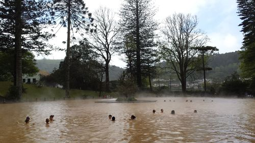 Students swimming in the Terra Nostra thermal pool at Furnas Village