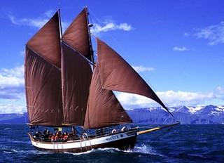 North Sailing Schooner